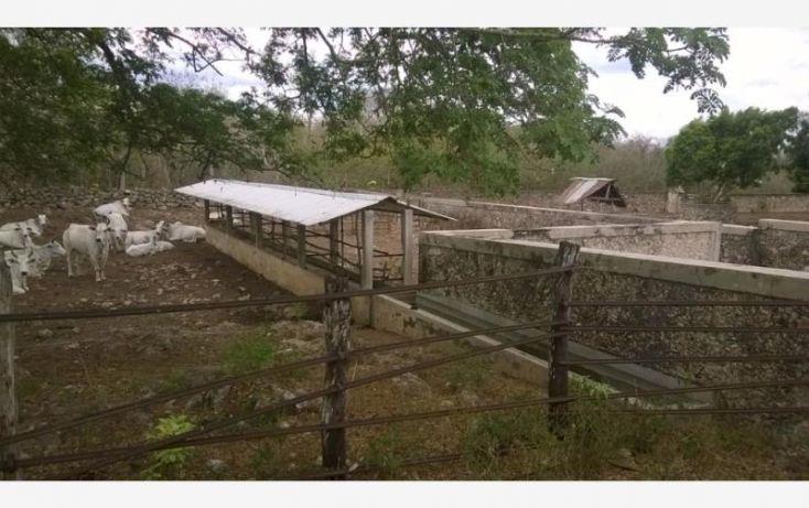 Foto de rancho en venta en, tunkas, tunkás, yucatán, 1755114 no 15