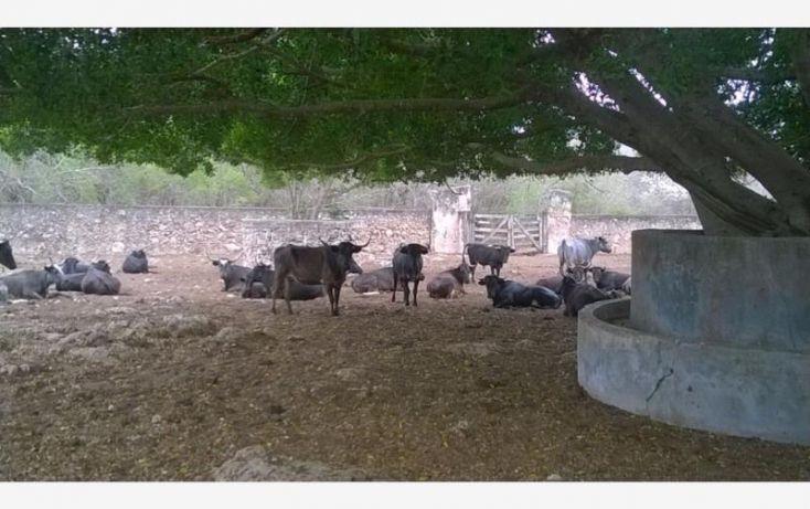 Foto de rancho en venta en, tunkas, tunkás, yucatán, 1755114 no 20