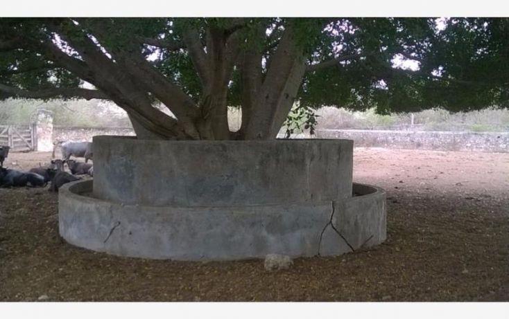 Foto de rancho en venta en, tunkas, tunkás, yucatán, 1755114 no 22