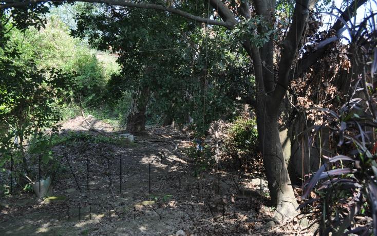 Foto de terreno comercial en venta en  , túxpam de rodríguez cano centro, tuxpan, veracruz de ignacio de la llave, 1103893 No. 04