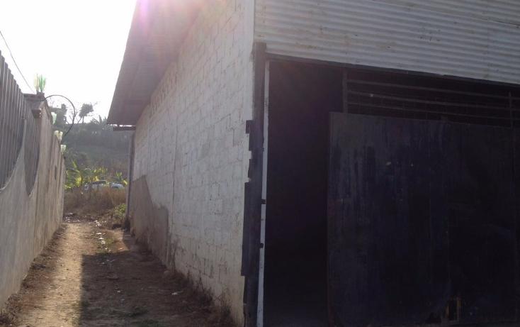 Foto de bodega en renta en  , t?xpam de rodr?guez cano centro, tuxpan, veracruz de ignacio de la llave, 1894544 No. 05