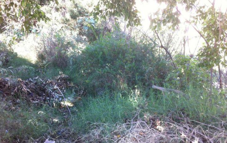 Foto de terreno habitacional en venta en tzompantle, lomas de zompantle, cuernavaca, morelos, 1793774 no 06