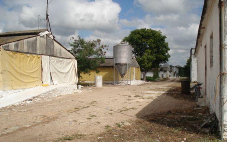 Foto de terreno comercial en venta en, ucu, ucú, yucatán, 1088509 no 02