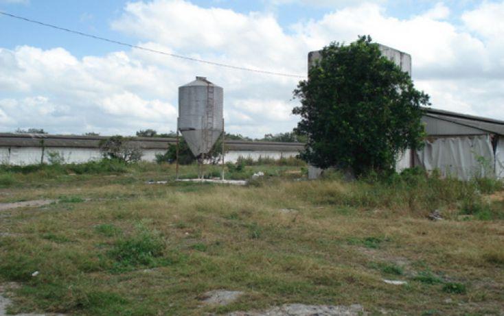 Foto de terreno comercial en venta en, ucu, ucú, yucatán, 1088509 no 03
