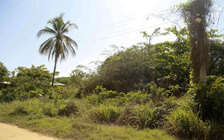 Foto de terreno habitacional en venta en unidad habitacional diamante 239 239 , la zanja o la poza, acapulco de juárez, guerrero, 1773330 No. 02