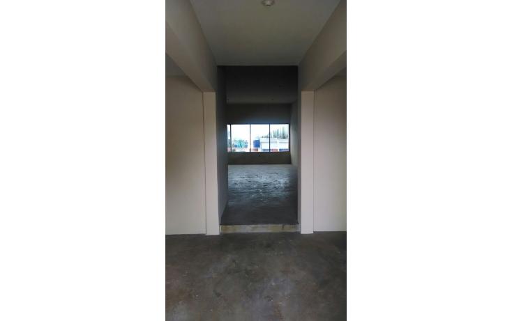 Foto de oficina en renta en  , unidad nacional, ciudad madero, tamaulipas, 1039567 No. 05