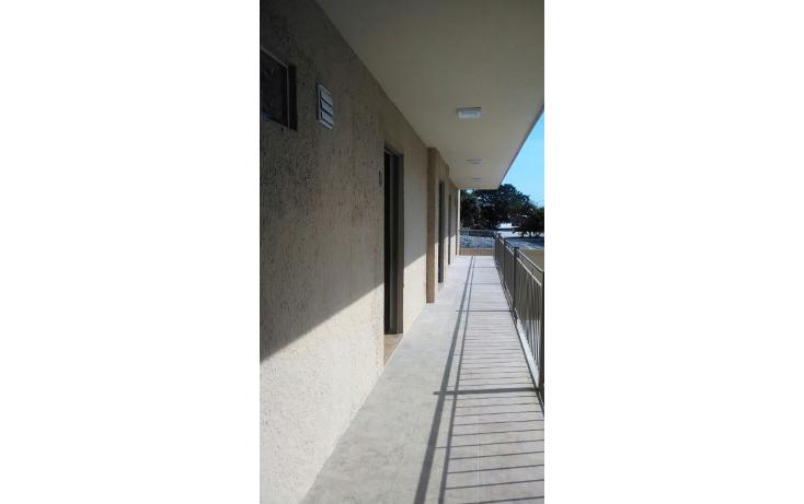 Foto de oficina en renta en  , unidad nacional, ciudad madero, tamaulipas, 1039567 No. 10