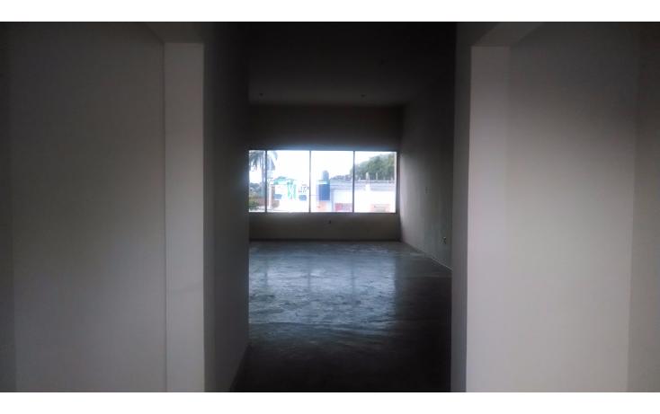 Foto de oficina en renta en  , unidad nacional, ciudad madero, tamaulipas, 1290979 No. 03