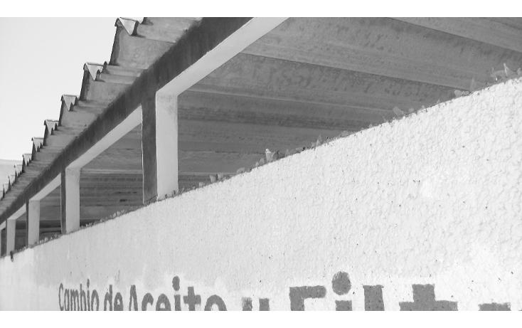 Foto de terreno comercial en venta en  , unidad nacional, ciudad madero, tamaulipas, 1294679 No. 03