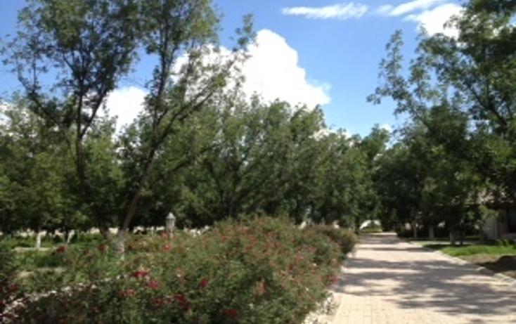 Foto de terreno habitacional en venta en  , valentín gómez farias, durango, durango, 1051717 No. 02