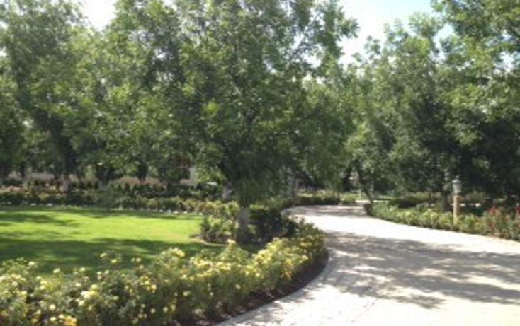 Foto de terreno habitacional en venta en  , valentín gómez farias, durango, durango, 1051717 No. 04