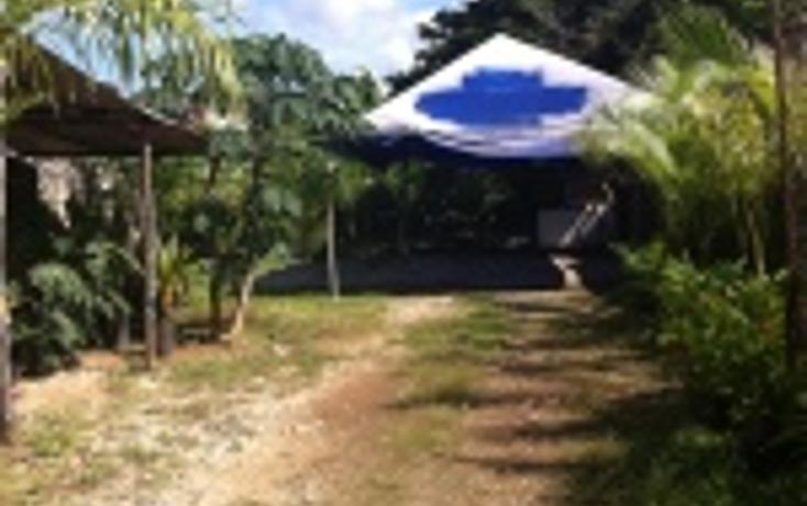 Foto de casa en renta en  , valladolid centro, valladolid, yucat?n, 1150103 No. 02