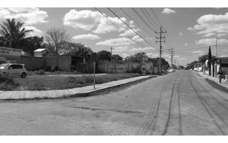 Foto de terreno comercial en venta en  , valladolid centro, valladolid, yucatán, 1289413 No. 03