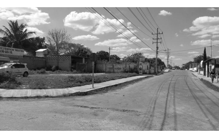Foto de terreno comercial en venta en  , valladolid centro, valladolid, yucatán, 1289413 No. 05