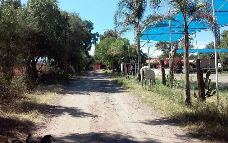 Foto de terreno comercial en venta en  , valladolid, jesús maría, aguascalientes, 2643685 No. 08