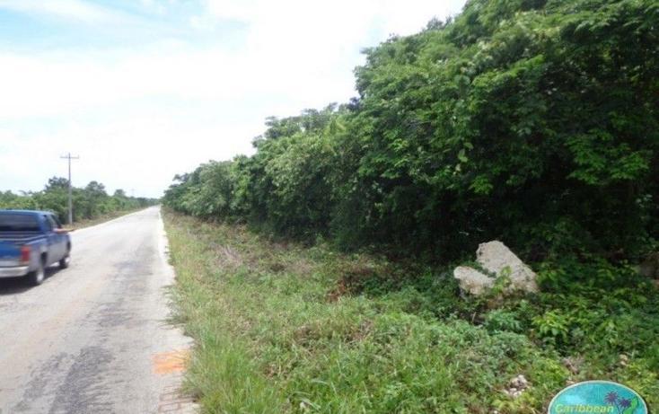 Foto de terreno comercial en venta en  , valladolid nuevo, lázaro cárdenas, quintana roo, 1932560 No. 01