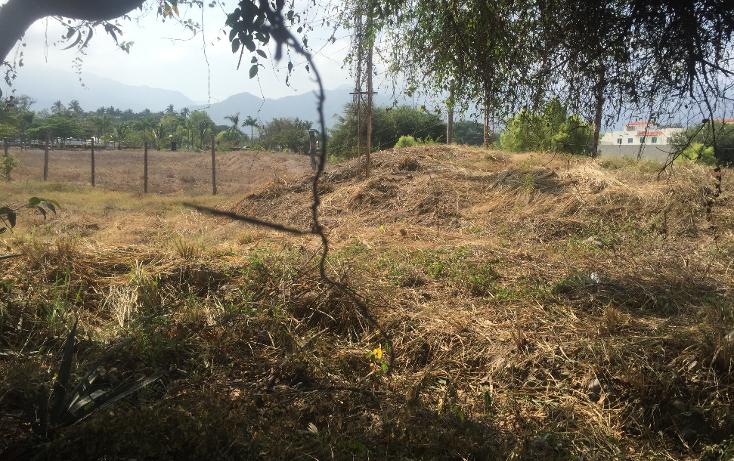 Foto de terreno comercial en renta en  , vallarta 500, puerto vallarta, jalisco, 1834532 No. 09