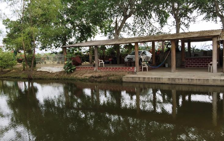 Foto de terreno habitacional en venta en  , valle de banderas, bah?a de banderas, nayarit, 1267923 No. 07
