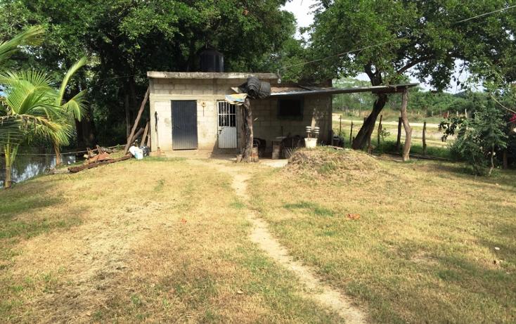 Foto de terreno habitacional en venta en  , valle de banderas, bah?a de banderas, nayarit, 1267923 No. 12