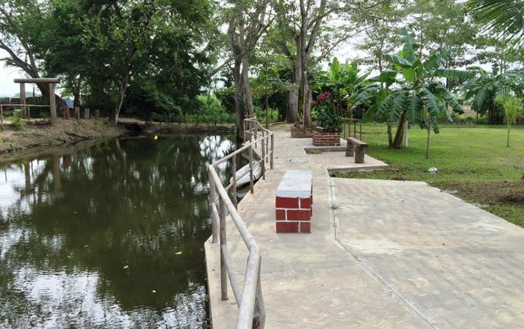 Foto de terreno habitacional en venta en  , valle de banderas, bah?a de banderas, nayarit, 1267923 No. 14