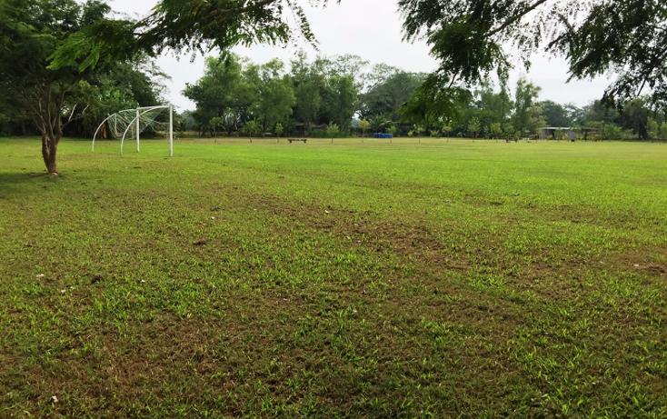 Foto de terreno habitacional en venta en  , valle de banderas, bah?a de banderas, nayarit, 1267923 No. 15