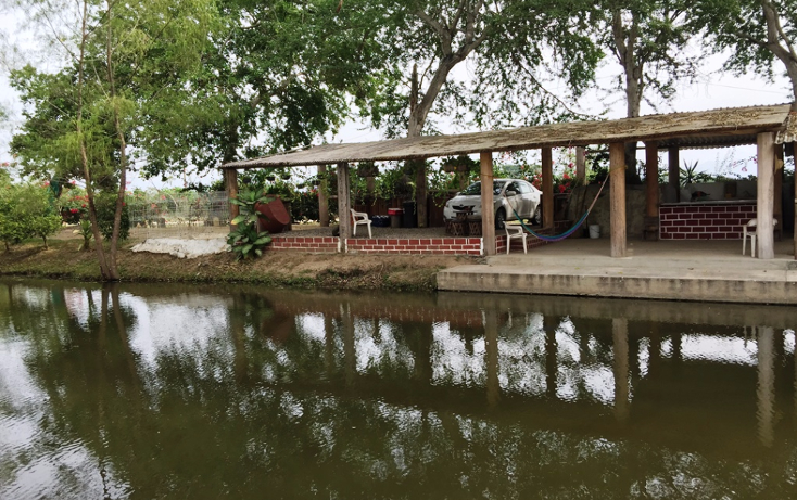 Foto de terreno habitacional en venta en  , valle de banderas, bah?a de banderas, nayarit, 1267923 No. 19