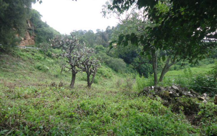 Foto de terreno habitacional en venta en valle de bravo sn, valle de bravo, valle de bravo, estado de méxico, 1698220 no 09