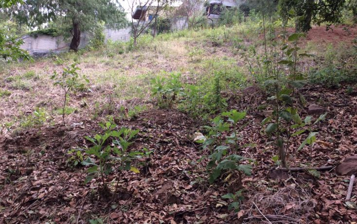 Foto de terreno habitacional en venta en valle de bravo sn, valle de bravo, valle de bravo, estado de méxico, 1962138 no 02