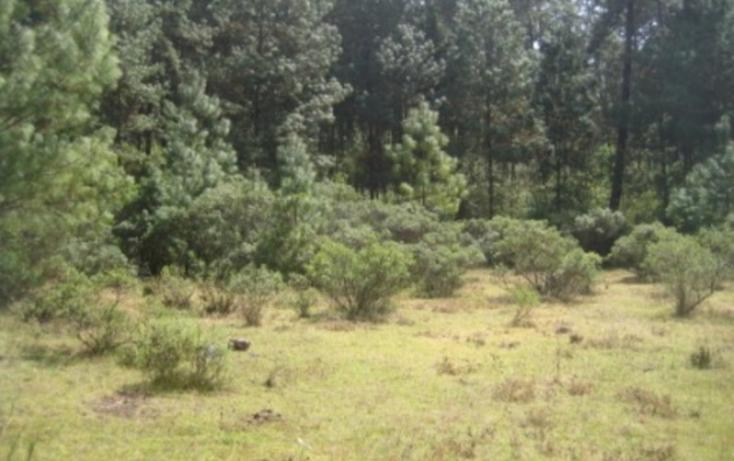Foto de terreno habitacional en venta en, valle de bravo, valle de bravo, estado de méxico, 829429 no 05