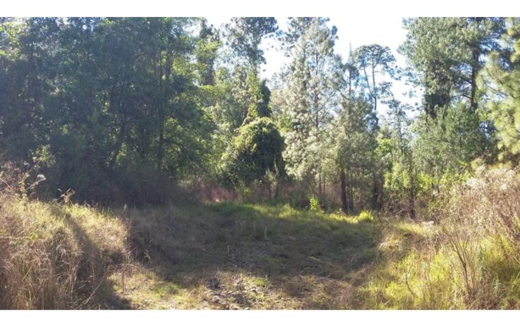 Foto de terreno habitacional en venta en  , valle de bravo, valle de bravo, méxico, 1109527 No. 01