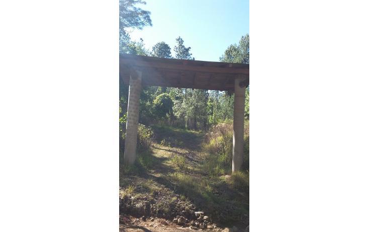 Foto de terreno habitacional en venta en  , valle de bravo, valle de bravo, méxico, 1109527 No. 02