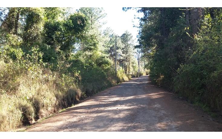 Foto de terreno habitacional en venta en  , valle de bravo, valle de bravo, méxico, 1109527 No. 03