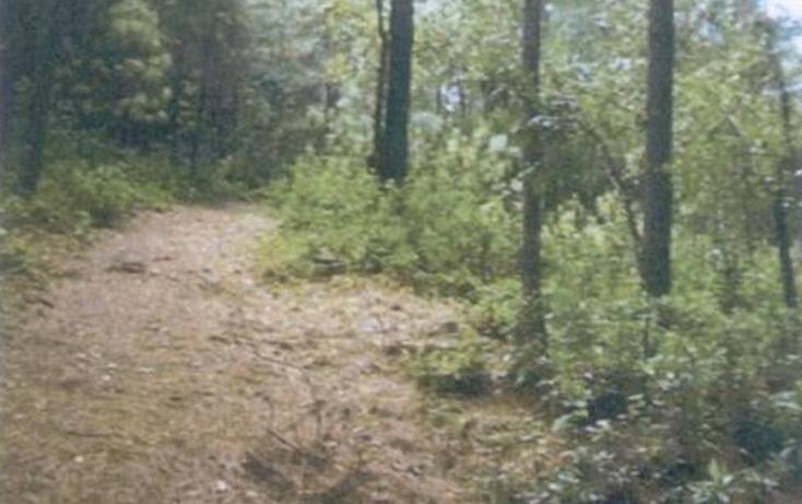 Foto de terreno habitacional en venta en  , valle de bravo, valle de bravo, méxico, 1182833 No. 01