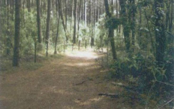 Foto de terreno habitacional en venta en  , valle de bravo, valle de bravo, méxico, 1182833 No. 02