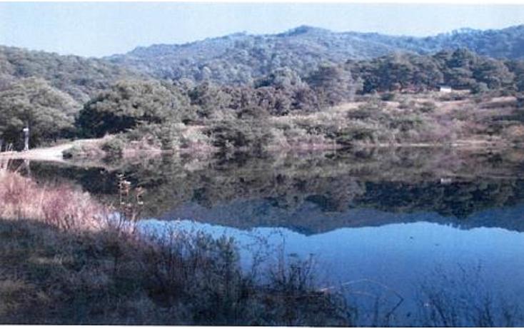 Foto de terreno habitacional en venta en  , valle de bravo, valle de bravo, méxico, 1193085 No. 02