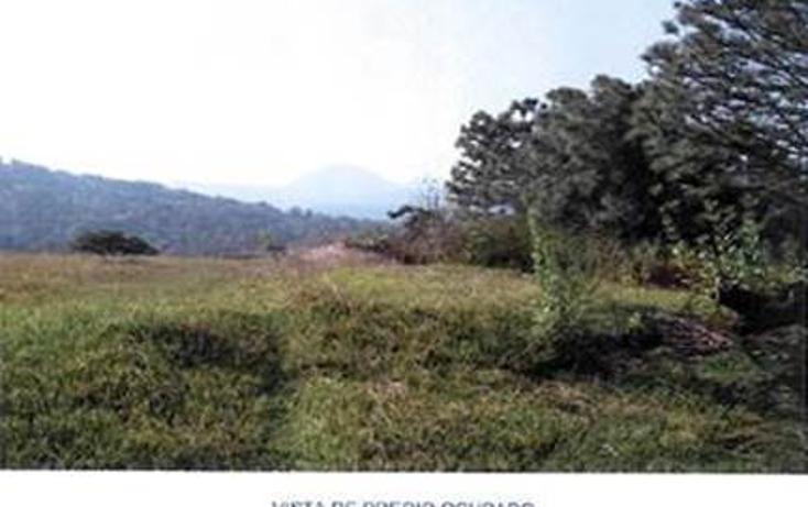 Foto de terreno habitacional en venta en  , valle de bravo, valle de bravo, méxico, 1193085 No. 05