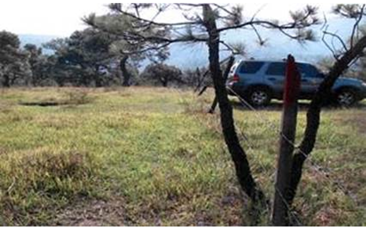 Foto de terreno habitacional en venta en  , valle de bravo, valle de bravo, méxico, 1193085 No. 06