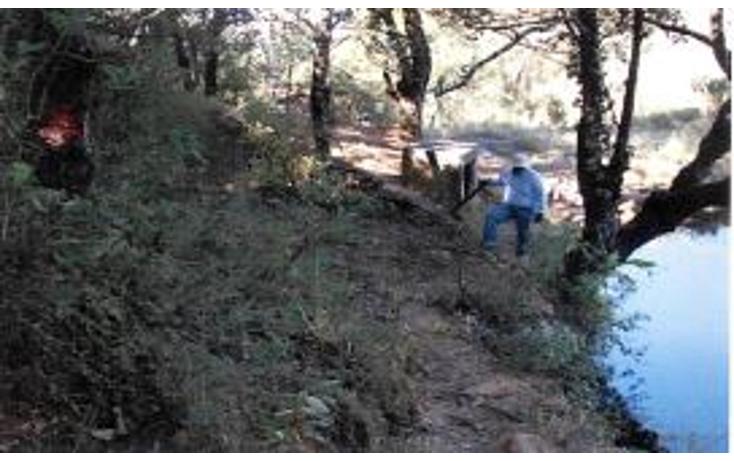 Foto de terreno habitacional en venta en  , valle de bravo, valle de bravo, méxico, 1193085 No. 10