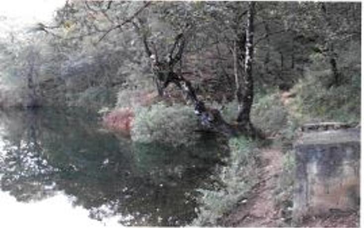 Foto de terreno habitacional en venta en  , valle de bravo, valle de bravo, méxico, 1193085 No. 13