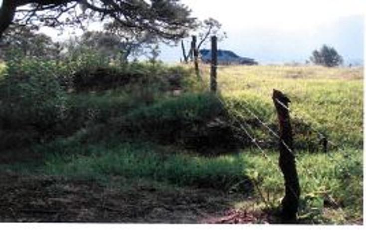 Foto de terreno habitacional en venta en  , valle de bravo, valle de bravo, méxico, 1193085 No. 14