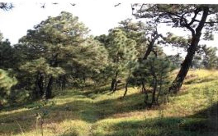 Foto de terreno habitacional en venta en  , valle de bravo, valle de bravo, méxico, 1193085 No. 15
