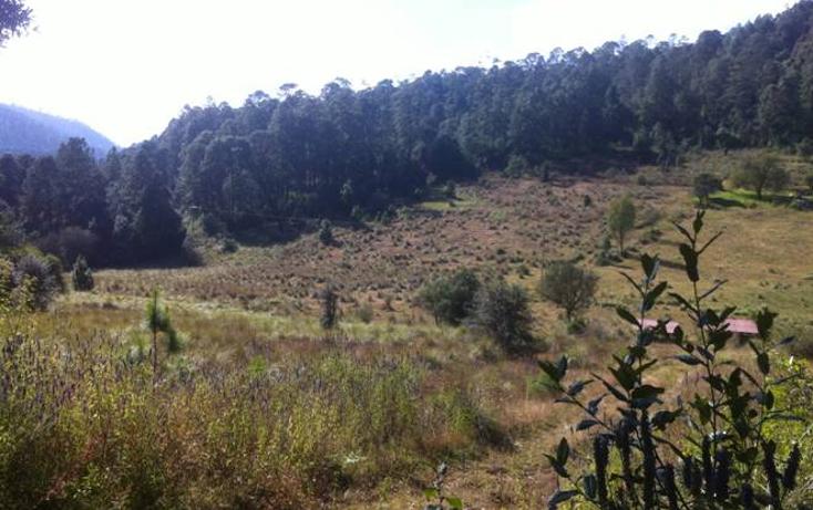Foto de terreno comercial en venta en  , valle de bravo, valle de bravo, méxico, 1393751 No. 02