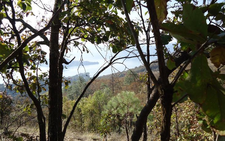 Foto de terreno habitacional en venta en  , valle de bravo, valle de bravo, méxico, 1697876 No. 02