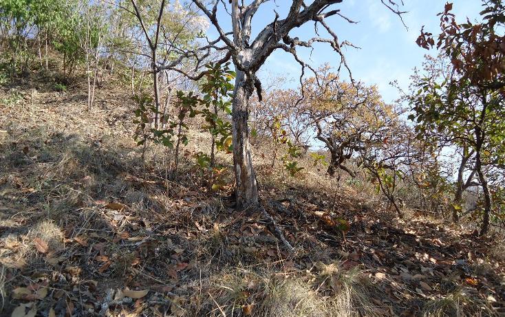Foto de terreno habitacional en venta en  , valle de bravo, valle de bravo, méxico, 1697876 No. 05