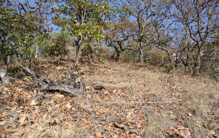 Foto de terreno habitacional en venta en  , valle de bravo, valle de bravo, méxico, 1697876 No. 07