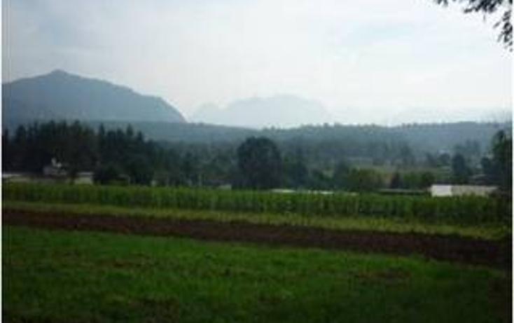 Foto de terreno habitacional en venta en  , valle de bravo, valle de bravo, méxico, 1697912 No. 04
