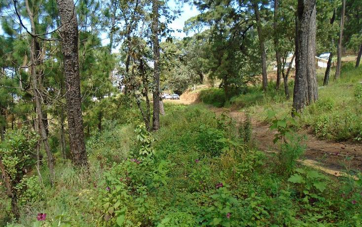 Foto de terreno habitacional en venta en  , valle de bravo, valle de bravo, méxico, 1698024 No. 07