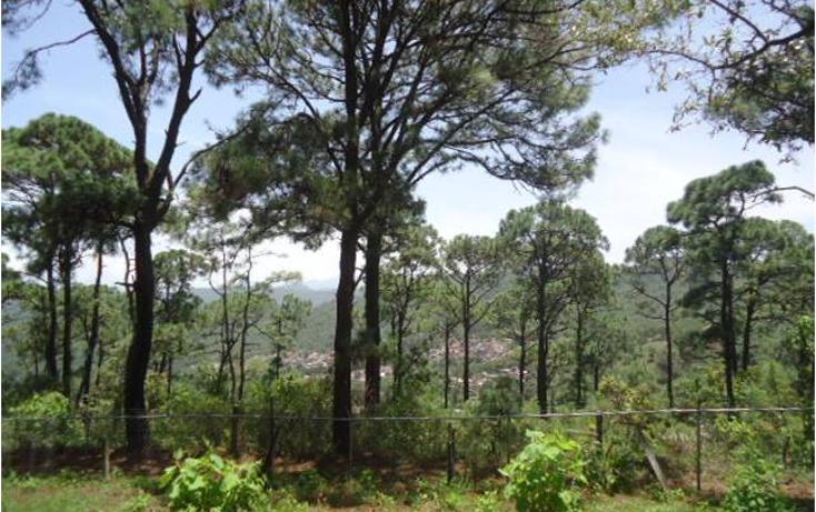 Foto de terreno habitacional en venta en  , valle de bravo, valle de bravo, méxico, 1698098 No. 01