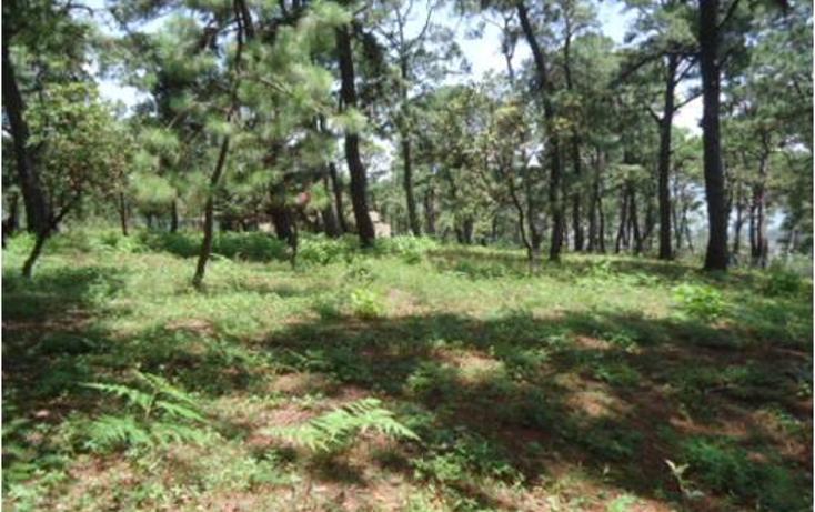 Foto de terreno habitacional en venta en  , valle de bravo, valle de bravo, méxico, 1698098 No. 02