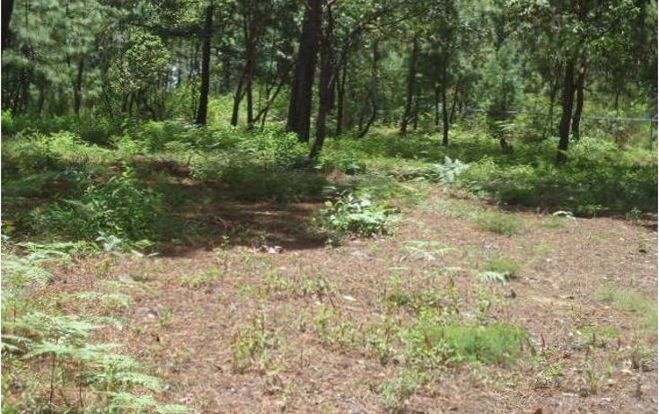 Foto de terreno habitacional en venta en  , valle de bravo, valle de bravo, méxico, 1698098 No. 03